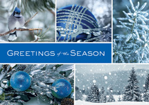 Icy Blue Wonder Holiday Cards